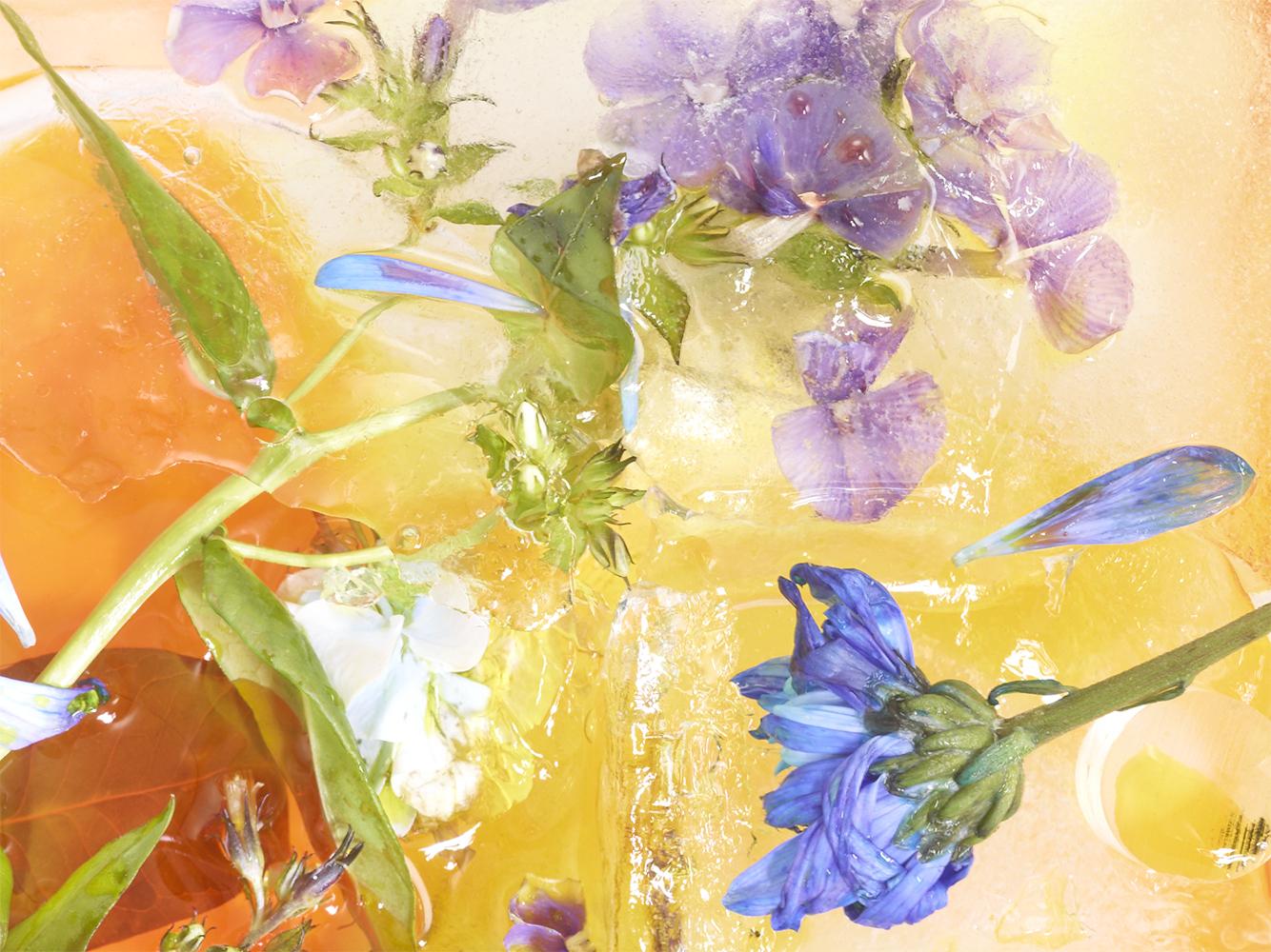 Lucas Laurent - Prix création - série Flower Power