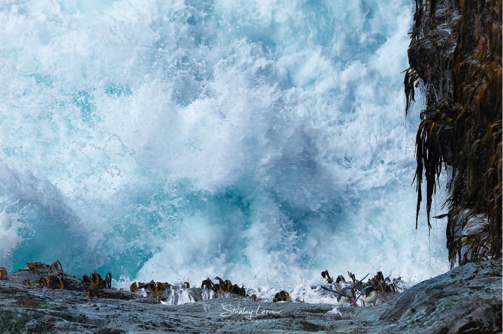 Survivre - série Cinquantièmes Hurlants © Stanley Leroux